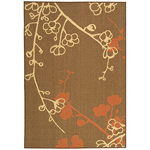 Amazon Prime Outdoor Area Rugs: Picture Of Safavieh Courtyard Collection CY4038C-7SQ Brown