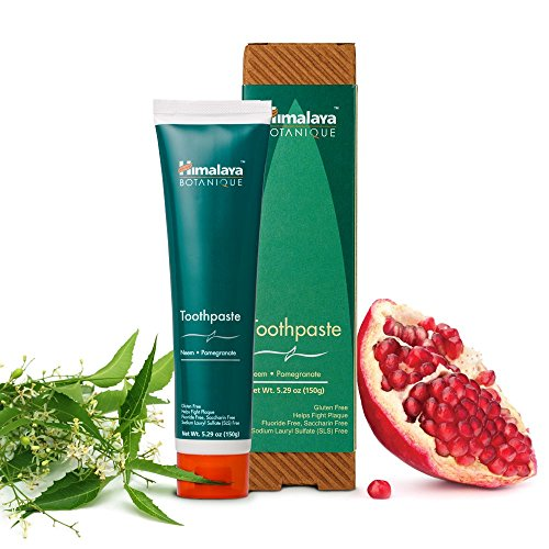 Neem and Pomegranate Fluoride-Free Toothpaste 5.29 Oz/150gm (Year Supply Of Gum compare prices)