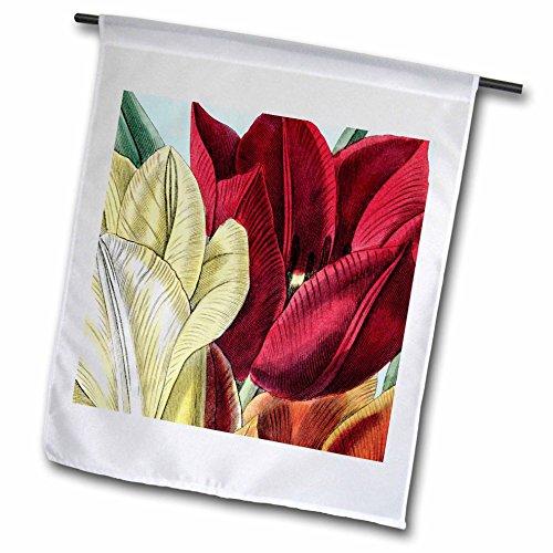 PS Vintage - Vintage Tulip Flowers - 12 x 18 inch Garden Flag (fl_203816_1)