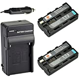 DSTE® 2x NP-F550 Battery + DC01 Travel and Car Charger Adapter for Sony CCD-RV100 CCD-RV200 CCD-SC5 CCD-SC9 CCD-TR1 CCD-TR215 CCD-TR940 CCD-TR917 Camera as NP-F330 NP-F530 NP-F570