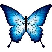 Hengda Kite So Beautiful Butterfly Kite Single Line Kite Incudes 30m String And Handle