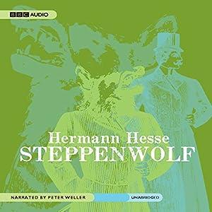 Steppenwolf - A Novel  - Hermann Hesse