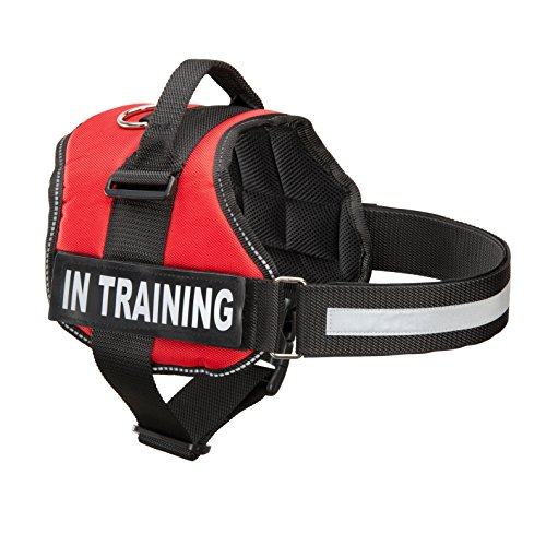 Service Dog In Training Vest With Reflective Strap & Removable Patches | Heavy Duty Nylon Straps and Handle | 7 Sizes, 5 Colors From Industrial Puppy (Service Dogs Training compare prices)