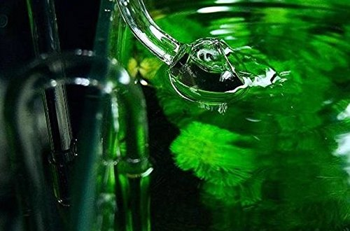 【Aquaglass】リリィ グラス クリア ガラス 製 給排水 セット 12/16 ホース 用 ADA 等の 水槽 に (ポピー) Linx