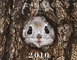 北の動物たち カレンダー 2010