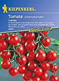 Sperli Gemüsesamen Tomaten Lupitas
