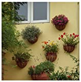 UniversalD® - Garden Hanging Planter Semicircular Wall Hanging Flowerpot Coir Iron Window Balcony (10inch)