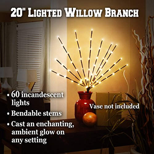 Electric/Corded Willow Branch with 60 Incandescent Lights 20 Inch Warm Light (Electric Branch Lights compare prices)