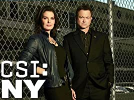 CSI: NY, Season 09 [HD]