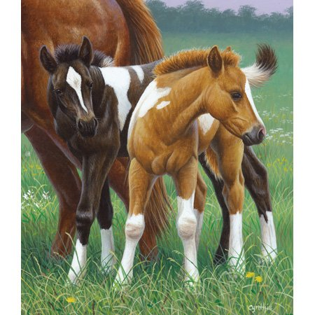 Cynthie Fisher Two Foals 550pc Jigsaw Puzzle