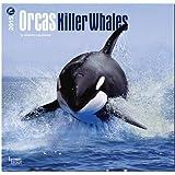 Orcas - Killer Whales 2015 Wall Calendar