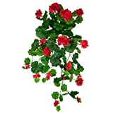 FloristryWarehouse Artificial silk trailing Geranium Red 80cm hanging basket window box flowers