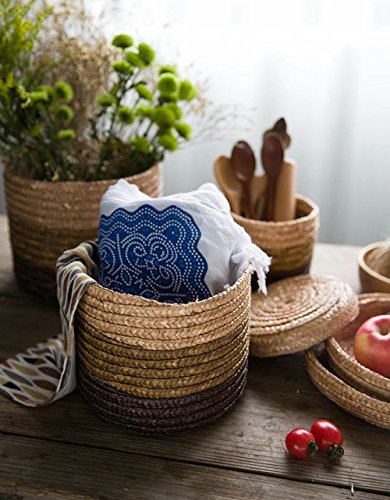 SpaceMaster Natural Wheat Straw Storage Baskets with Lid, Set of 3, Eco-Friendly Hand-Woven Covered Round Box Bin (File Basket Lid compare prices)