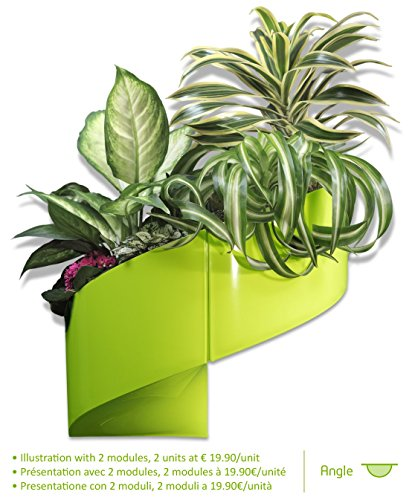 modulgreen-a-designer-wall-mounted-plant-pot-for-interiors-exteriors-green