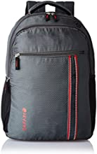 Safari 25 ltrs Laptop Bag (Connect-Grey-LB)