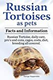 img - for Russian Tortoises as Pets. Russian Tortoise: Facts and Information. Daily Care, Pro's and Cons, Cages, Costs, Diet, Breeding All Covered book / textbook / text book