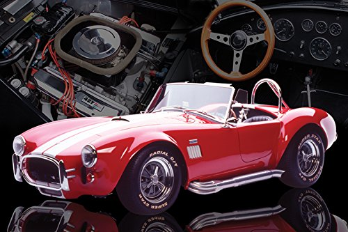 Red AC Cobra Muscle Sports Car Photography Hobby Poster Print 24 by 36 (Muscle Cars Poster compare prices)