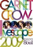 GARNET CROW livescope 2009~夜明けのSoul~ [DVD]