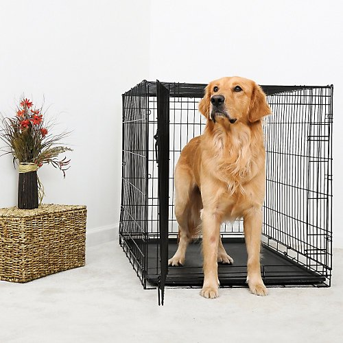 Duracrate Folding Dog Crate 36Lx23Wx25H front-999811