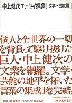 【バーゲンブック】 中上健次エッセイ撰集 文学・芸能篇