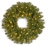 National Tree 24-Inch Norwood Fir Wreath with 50 Concave Soft White LED Lights