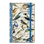 Michel Design Works Pocket Journal, Oken Bird Study, 3-3/4 by 6-Inch
