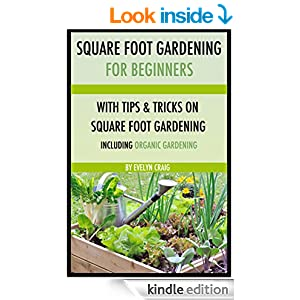 square foot gardening for beginners square foot