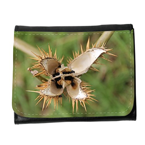 Cartera unisex // M00153821 Fiore spine spinoso Flora Giallo // Small Size Wallet