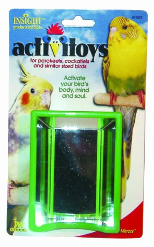 Hall of Mirrors Bird Toy