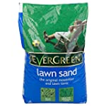 Evergreen Lawn Sand 25kg