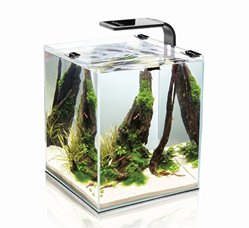shrimp-set-smart-led-30-black-aquael-caridine-poissons-plantes-aquarium-complet