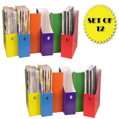 COLORFUL MAGAZINE FILE HOLDERS (SET OF 12)