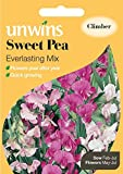 Unwins Pictorial Packet - Sweet Pea Everlasting Mix - 21 Seeds