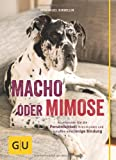 836c976fdbbe8a Macho oder Mimose - So erkennen Sie die Persönlichkeit Ihres Hundes