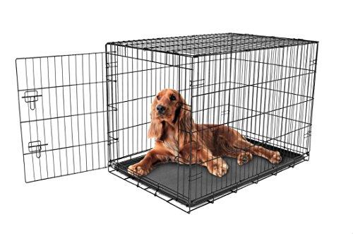 Carlson sichere und kompakte Tür Hundebox, ZWISCHEN-