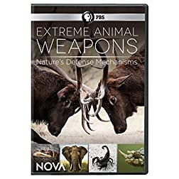 NOVA: Extreme Animal Weapons