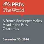 A French Beekeeper Makes Mead in the Paris Catacombs | Emma Jacobs