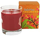 Stella Mare Sandalwood Soy Candle, 5 Ounce -- 1 each.