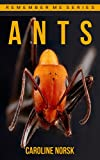 Image of Ants: Amazing Photos & Fun Facts Book About Ants For Kids (Remember Me Series)