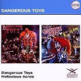 Dangerous Toys Dangerous Toys / Hellacious Acres