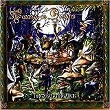 Tingaralatingadun by Tuatha De Danann (2002-12-02)