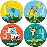Pinkie Penguin Safari Baby Monthly Stickers - Baby Milestone Stickers - 1-12 Months - Onesie Stickers - Baby Shower...