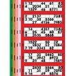 Jumbo Bingo Tickets pads 6 to view (Orange)
