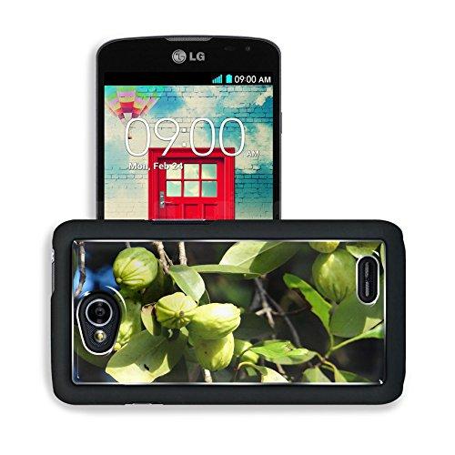 Luxlady Premium LG Optimus L70 Dual Aluminum Backplate Bumper Snap Case Garcinia Cambogia Malabar Tamarind Image 343535