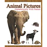 Animal Pictures Alphabetically with Names ~ Dinesh Rajan