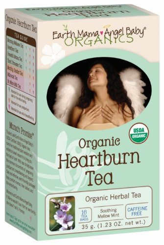 Earth Mama Angel Baby Organic Heartburn Tea - 1