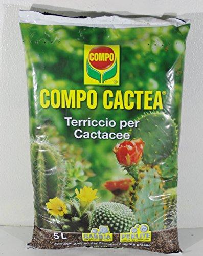 compo-cactea-5-lt