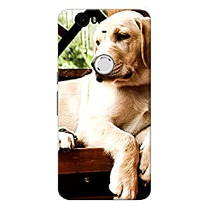 Mobile Back Cover For Huawei Google Nexus 6P (Printed Designer Case)