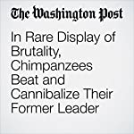 In Rare Display of Brutality, Chimpanzees Beat and Cannibalize Their Former Leader | Derek Hawkins