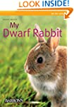 My Dwarf Rabbit